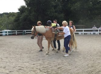 Kiwi's first lesson back